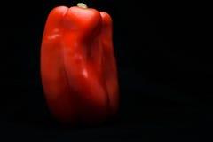 czerwony pieprzowa Obrazy Stock