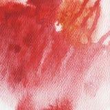Czerwony pluśnięcie, akwarela abstrakta ilustracja Fotografia Stock