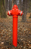 Czerwony pożarniczy hydrant Zdjęcie Royalty Free