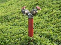 Czerwony Pożarniczy hydrant Zdjęcie Stock