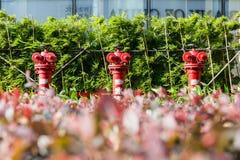 Czerwony Pożarniczy hydrant fotografia royalty free
