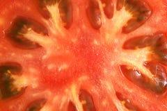 czerwony pomidor zdjęcia royalty free
