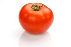 czerwony pomidor Zdjęcia Stock