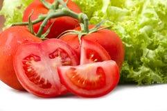 Czerwony pomidor i kropli woda Fotografia Stock