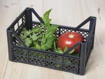 Czerwony pomidor w pudełku z pomidorowymi liśćmi Zdjęcia Stock