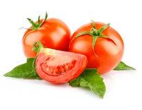 Czerwony pomidorowy warzywo z cięcia i zieleni liść Zdjęcia Stock