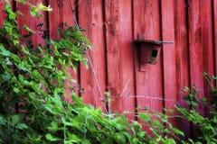 Czerwony ptaka dom dołączający Czerwona stajnia obraz royalty free
