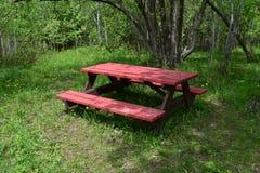 Czerwony pykniczny stół w zielonym lesistym parku obrazy royalty free