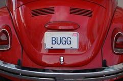 czerwony robaki Zdjęcie Stock