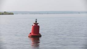 Czerwony rzeczny boja dla statków na wodzie - letni dzień Obrazy Stock