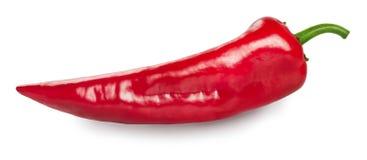 Czerwony słodki spiczasty pieprzowy capsicum odizolowywający na bielu Fotografia Royalty Free