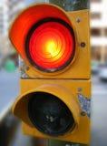 czerwony semafor fotografia stock