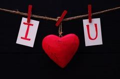 Czerwony serca i karty tekst KOCHAM CIEBIE chwyty dalej na drewnianych sukiennych czopach na arkanie Obrazy Stock