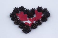Czerwony serca i sosny rożek Zdjęcia Royalty Free