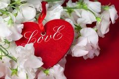 Czerwony serce Zdjęcie Stock