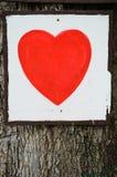 Czerwony serce na drzewie Obraz Royalty Free