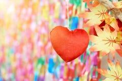 Czerwony serce na kolorowym tle zdjęcia royalty free