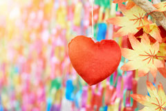 Czerwony serce na kolorowym tle fotografia royalty free