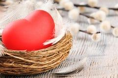 Czerwony serce w gniazdeczku z piórkami Zdjęcia Royalty Free