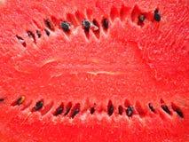 Czerwony soczysty i dojrzały melon Fotografia Stock