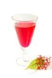 Czerwony syrop dla koktajli/lów Zdjęcie Royalty Free