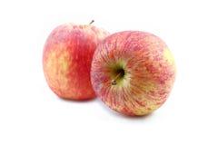 czerwony tła jabłkowy white Zdjęcie Stock