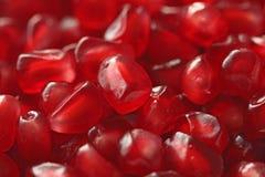 Czerwony tło Zbożowi Czerwoni granaty Duży Dojrzały Czerwony Granets lub dziąsła Zdjęcie Royalty Free