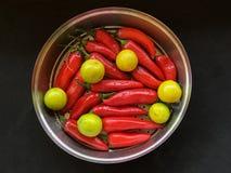 Czerwony Tabasco pieprz i ? zdjęcia royalty free