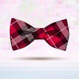 Czerwony tartanu krawat Zdjęcia Stock