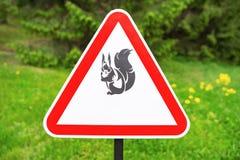 Czerwony trójboka znaka ostrzeżenie obecność wiewiórki na tle zieleni drzewa w parku obrazy royalty free