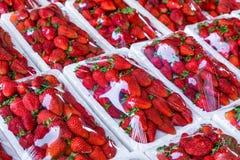 Czerwony truskawka wzór w rynku ?wie?a truskawki tekstura zdrowe owoce obrazy royalty free