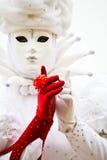 czerwony white Fotografia Royalty Free