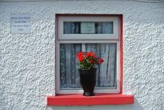 czerwony white Zdjęcia Stock