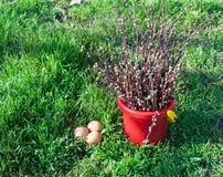 Wielkanocy wciąż życie na zielonej trawie Obrazy Royalty Free