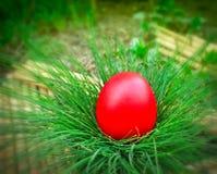 Czerwony Wielkanocny jajko Zdjęcia Stock