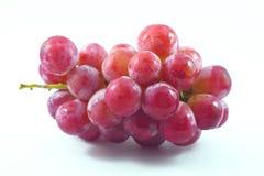 Czerwony winogrono Obrazy Stock