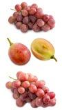 Czerwony winogrono i plasterek w połówce na białym tle fotografia stock