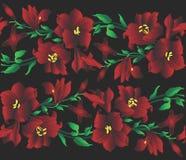 czerwony wzoru ilustracji lilly royalty ilustracja