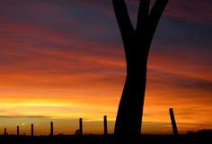 czerwony zachód słońca Obrazy Royalty Free