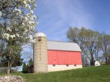 czerwony zbożowy silos barn Obrazy Stock