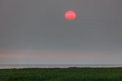 Czerwony zmierzch w mgiełce Fotografia Stock