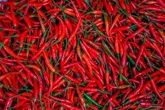 Czerwonych Chillies gorącego pieprzu korzenny tło obrazy stock