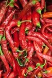 Czerwonych pieprzy tła tekstura czerwony pieprz, gorący czerwony pieprz, czerwony chili, przyprawowa papryka, ognisty czerwony pi Zdjęcia Stock