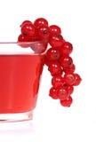 czerwonych porzeczek Zdjęcie Royalty Free