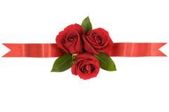 Czerwonych róż sztandaru tasiemkowa granica prosto horyzontalna Obraz Royalty Free