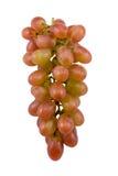 czerwonych winogron Obraz Royalty Free