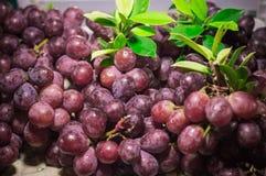 Czerwonych winogron tekstury tło i tapety Fotografia Royalty Free