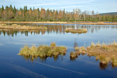 czeski gór republiki sumava obrazy royalty free
