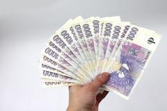 Czeski pieniądze w ręce, tysiące Fotografia Stock