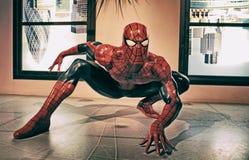 Czlowiek-pająk Fotografia Royalty Free